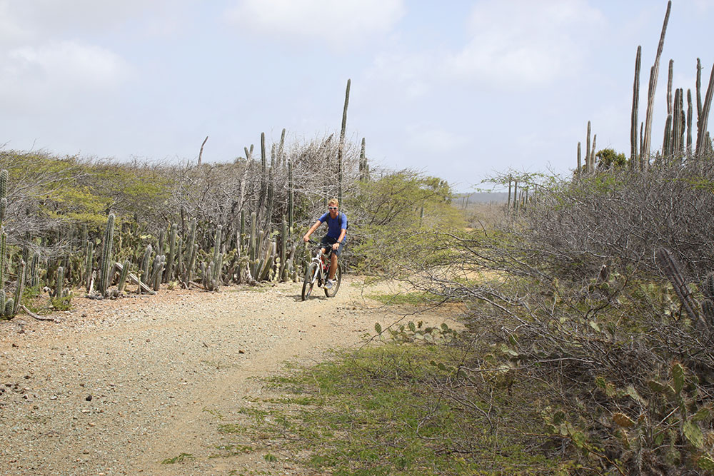 biking on Bonaire
